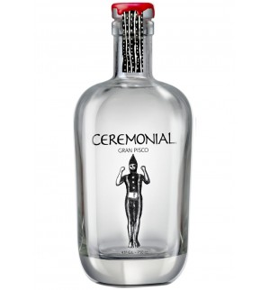 Pisco Ceremonial Shoort